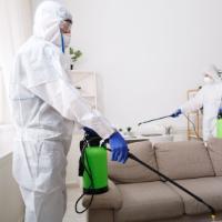 servizi disinfezione per germi patogeni diffusi nell'ambiente, coronavirus