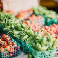 Haccp Monitoraggio e controllo alimenti